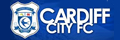 Hospitality jobs at Cardiff City Stadium